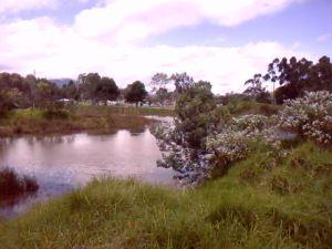 Humedal Salitre