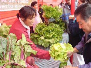 Agricultura Urbana en Bogotá